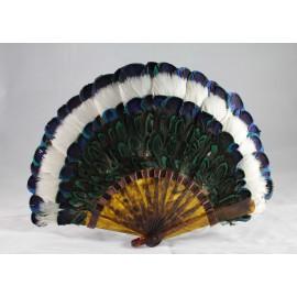 Eventail en plumes de paon et écaille de tortue vers 1900 VENDU
